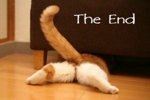 the end cat funny pilates