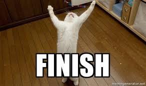 finish cat pilates fun