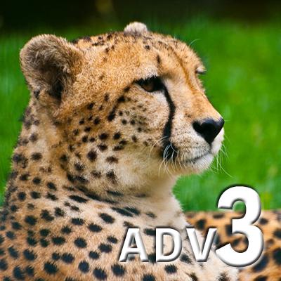 ADVANCED 3 (eng)