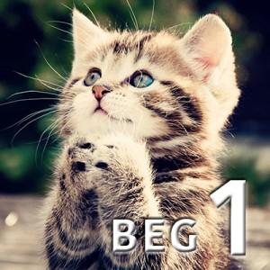 beg 1