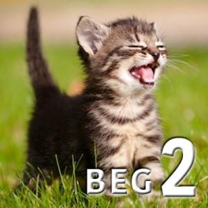 beg 2