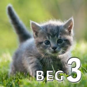 beg 3