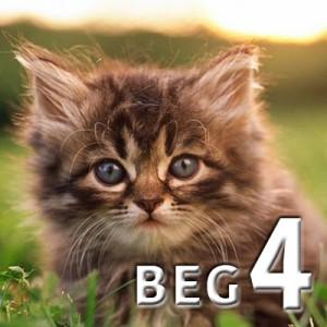 beg 4