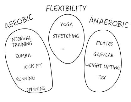 flex-aerob