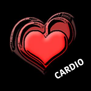 CARDIO TRAINING (Aerobic)